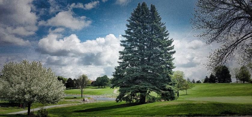 Ortonville MN Golf Course